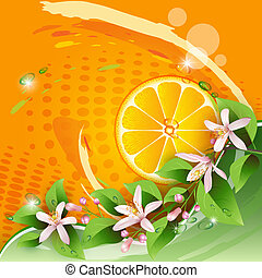 Background with orange slice