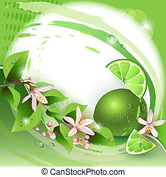 Background with fresh lime