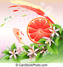 Background with grapefruit slice - Abstract background with...
