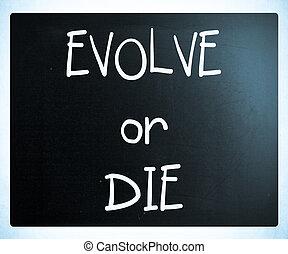 """""""Evolve or Die"""" handwritten with white chalk on a blackboard"""