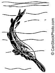 amerikai, paddlefish