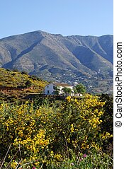 Spanish countryside, Mijas, Spain. - Country farm in the...