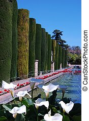 Water gardens, Cordoba, Spain. - Water garden at the Palace...