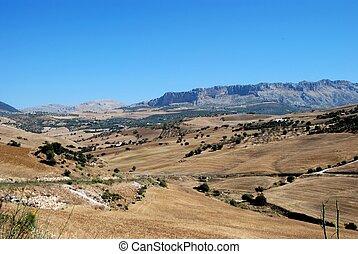 Wheat fields Near Almogia, Spain - Wheat fields with El...