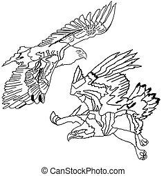 símbolos, águilas,  vector, Ilustración, tatuaje