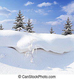 Snow-covered - winter snow covered fir trees on blue sky...