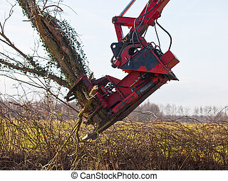 Tree cutting crane