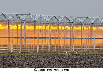Exterior of a commercial greenhouse - Exterior facade of a...