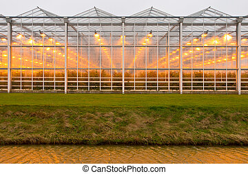 background commercial greenhouse - background of a...