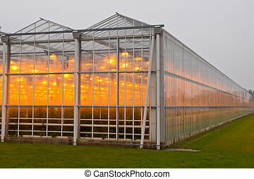 The exterior of a greenhouse - The exterior glass facade of...