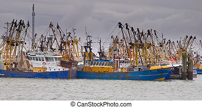 Fishing cutter - Fishing boats are waiting for the weather...