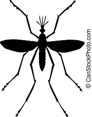 Mosquito silhouette Close up Vector eps 8
