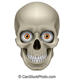 Freaky Human Skull Illustration on white background