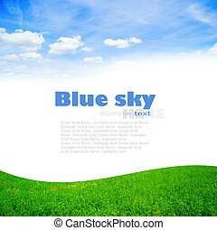 Green grass with blue sky - fresh green grass with bright...