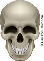 Human Skull - Freaky Human Skull. The emotion of joy....