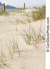 Beach Sand Dune, Cornwall, UK - Sand dune scene Daymer Bay,...