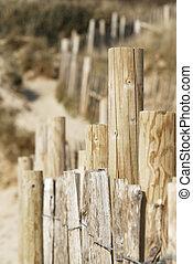 Beach Sand Dune, Cornwall, UK. - Sand dune scene. Daymer...