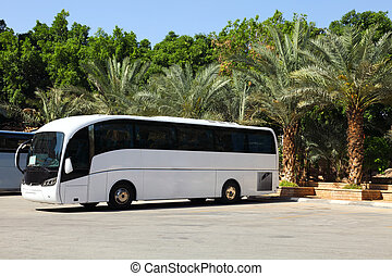 Tour Bus and Summer vacation