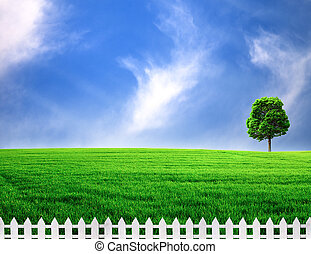 outdoor rural scene with white fence