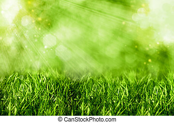 Abstract summer backgrounds with green grass and bokeh