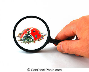 Magnifying glass and tin toy representing a ladybug in red...