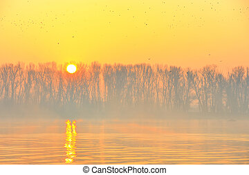 Sunrise on Danube river