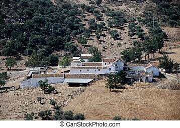 Farm near Almogia, Andalusia - Traditional large whitewashed...