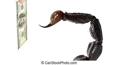 scorpion, attaques, dollar