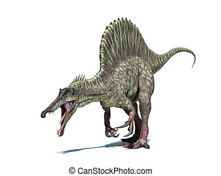 Spinosaurus dinosaur. Very detailed and scientifically correct. Isolated on white background with drop shadow and clipping path included.
