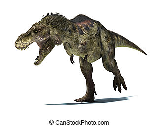 Tyrannosaurus Rex, very well detailed and scientifically...