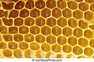 Honeycomb background or texture