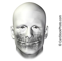 teeth dental scan adult male - Teeth dental scan x-ray of...