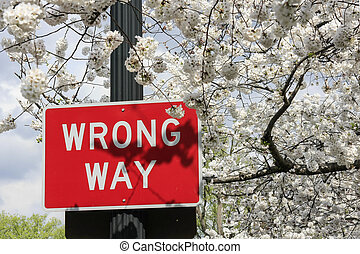 Traffic sign wrong way over cherry blossoms