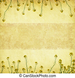 Grungy Backgroundold paper rapeseed