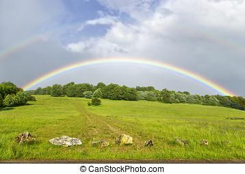 Regnbågar, över, kullig, grässlätt