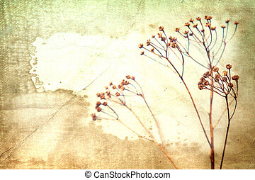 Dry flower on old book background. Vintage style