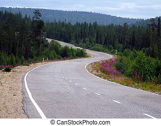 Winding road - Long and winding road among the hills
