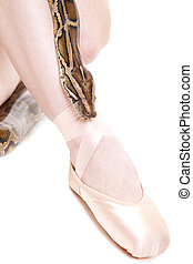 Ballerina's feet in pointe and python on isolated white -...