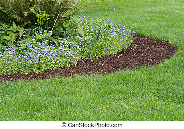 Flower bed with blue flowers
