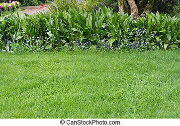 Green lawn with a flower bed border