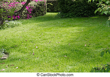 Green fresh mown lawn with flowers