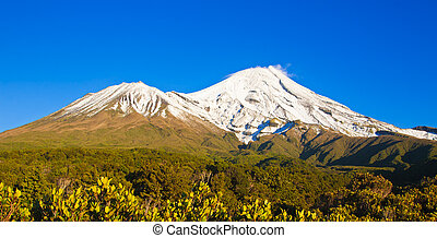 Mt Egmont or Mt Taranaki, New Zealand, covered in snow,...