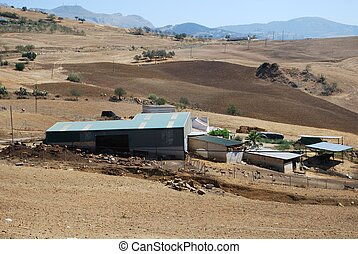 Goat farm near Almogia, Spain - Farm Cortijo with goats in...