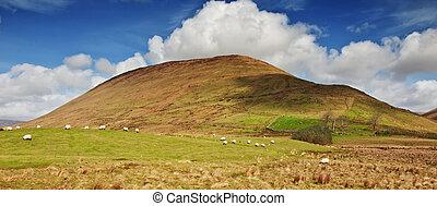 Connemara Rural irish Photography Landscape from Ireland