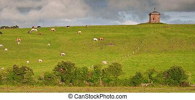 scenic ancient irish castle in county clare, ireland