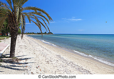 Scenic beach at Chalkidiki peninsula of north Greece near...