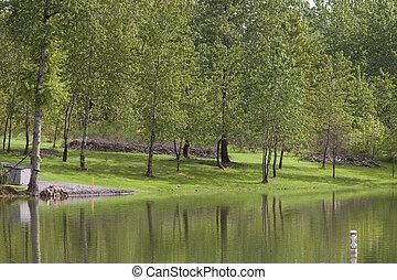 Park and lake.