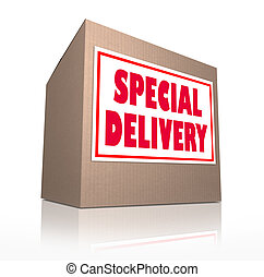 Special Delivery Mailed Cardboard Box Shipment - The words...