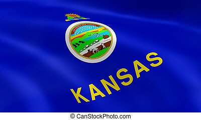 Kansan flag in the wind
