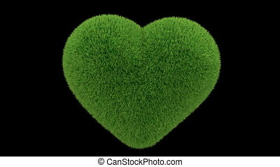 heart grass loop - Heart made of grass looping with matte